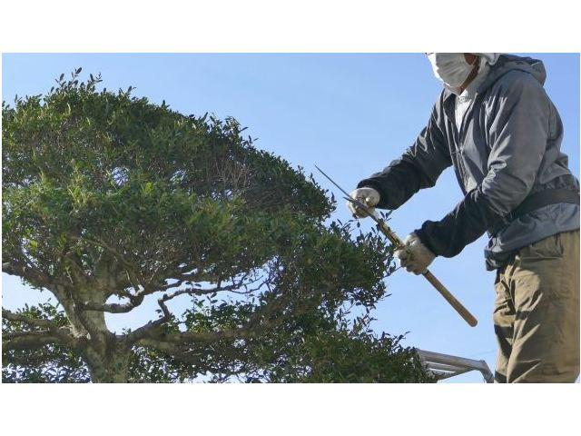 有限会社福島ガーデンセンターのアルバイト情報