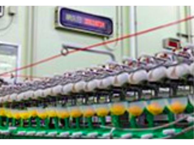キユーピータマゴ株式会社 福島工場のアルバイト情報